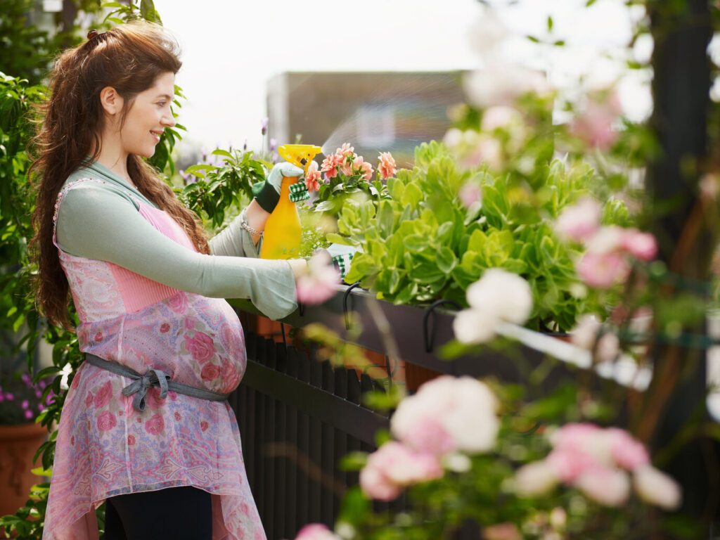 What to know about the CA Surrogacy Process